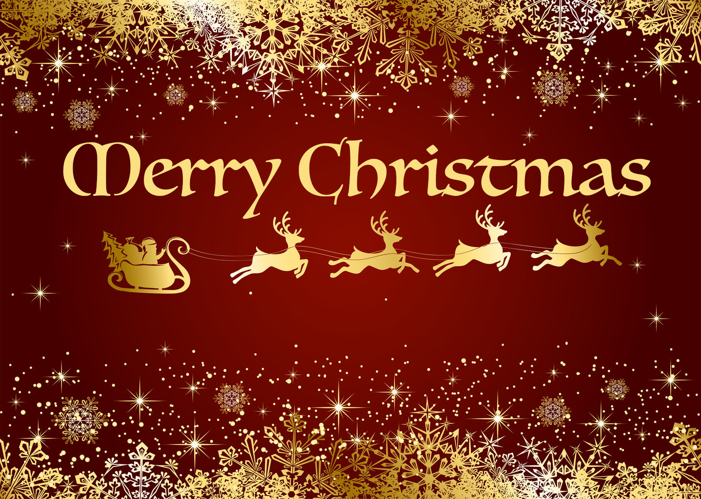 Merry Christmas Photo Offer